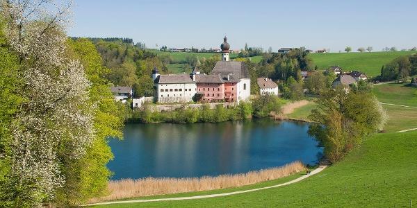 Frühling am Höglwörther See