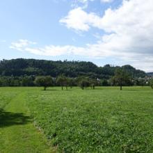 Schlichemwanderweg kurz vor Epfendorf