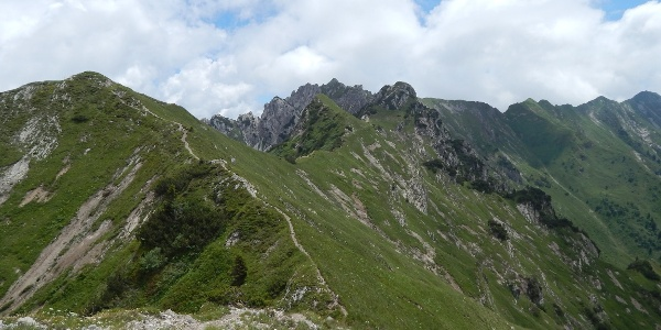 Panorama along the ridge