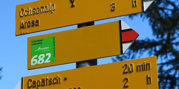 Der Schanfigger Höhenweg ist mit der Nr. 682 markiert.
