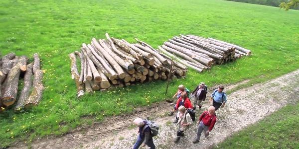 Kocher-Jagst-Trail: Kochersteig
