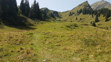 The faint grassy path leading to Chalets de Torrenz