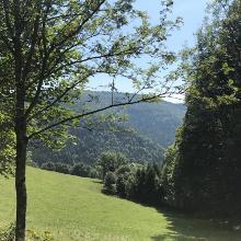Simonswald