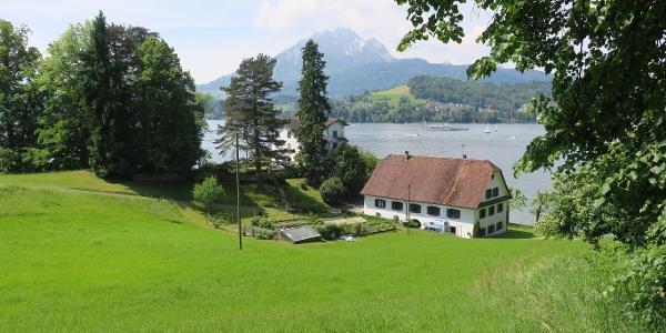 Aussicht vom Wanderweg Richtung Schloss Meggerhorn