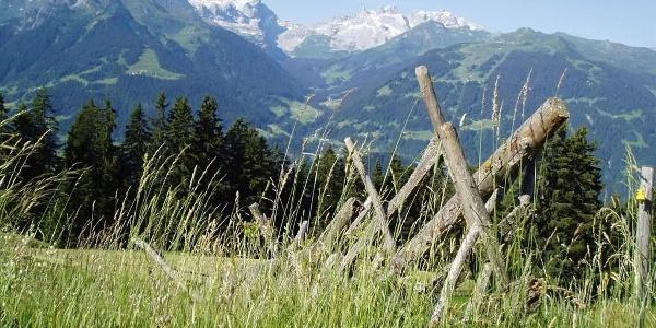Panoramablick Maisäß Tschofen