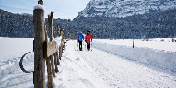 Winterwandern am Fuße der Kanisfluh