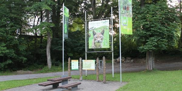 Tor zur Waldroute Bilsteintal
