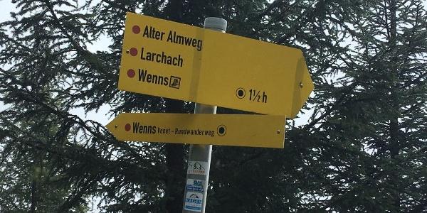 Abzweig auf Alten Almweg