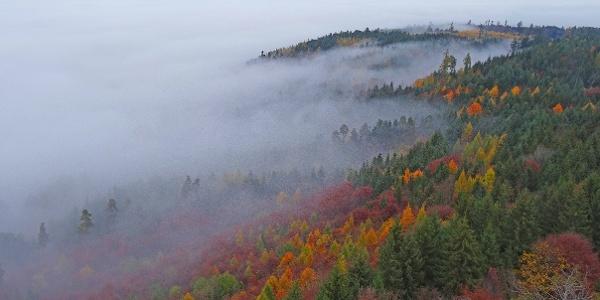 Die Wanderung zum Chutzenturm ist auch im Herbst schön.