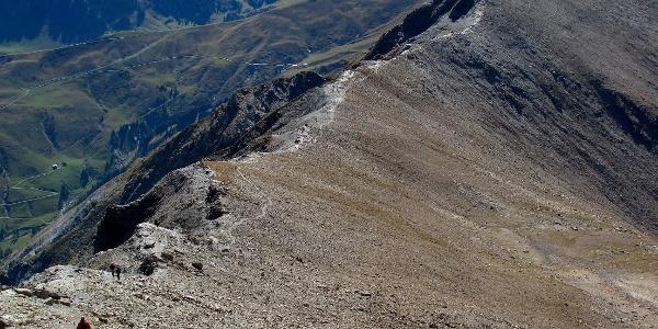 Der lang gezogene Grat zwischen Tierberg und Albristhorn.