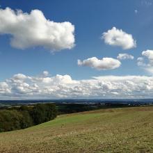 Aussicht in der Pfalz