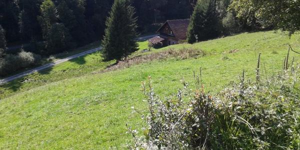Ausblick von oben auf den Rombachhof