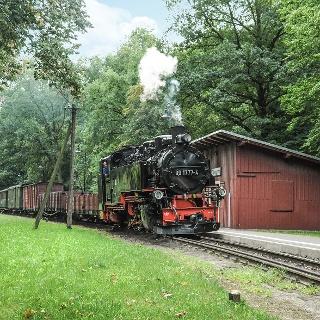 Lößnitzgrundbahn im Lößnitzgrund