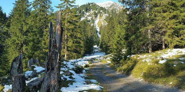 Weg vom Rellstal zur Heinrich-Hueter Hütte