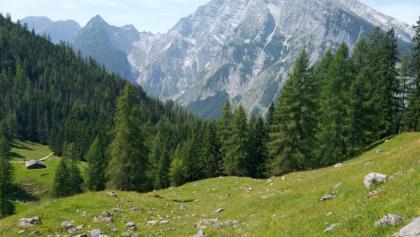 Watzmann seen from the Königsweg