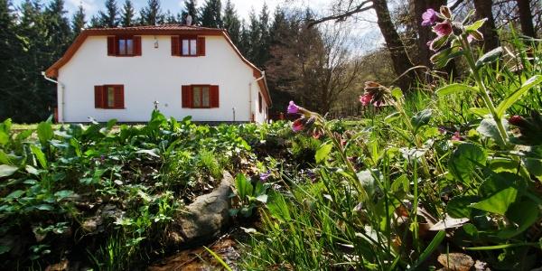 Vadvirágokat és fűszernövényeket is rejt a Szalajka-ház udvara