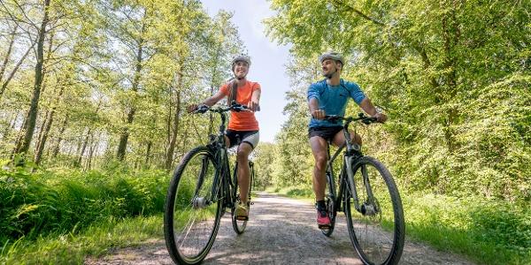 Radfahren Südliches Waldviertel