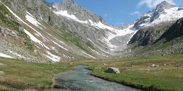 Val Strem mit Wittenalpstock und Oberalpstock