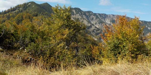 Alpintour Hochkar - Dürrenstein (Teilstück)