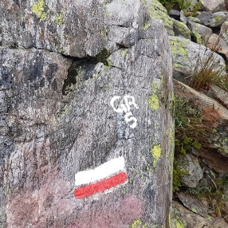 The ubiquitous red and white markings