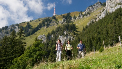"""Hikers on their way to """"Grünten"""""""
