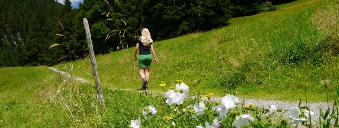 Wanderweg in Oberallgäuer Hügellandschaft