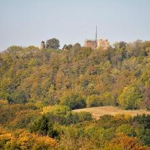 Blick auf die Küssaburg vom Hauackerhof her gesehen.