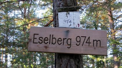 Eselberg - Gipfel