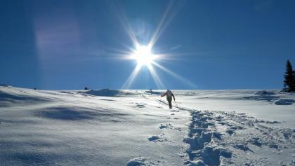 Schneeschuhwandern im Diemtigtal.