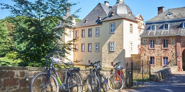 Burg Eicks