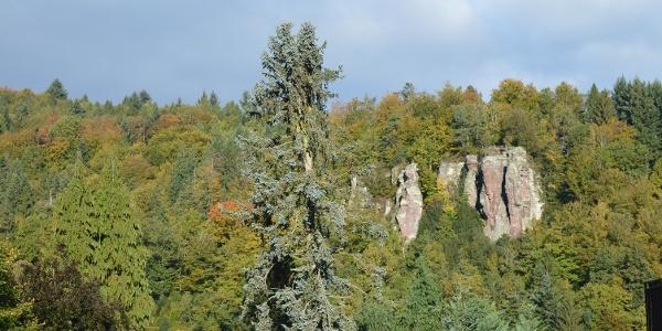 Ausblick auf Falkensteinfelsen vom Bleichweg