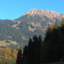 Foto von Mountainbike: Dörfer-Runde - Radfahren durch die Hörnerdörfer • Hörnerdörfer (14.10.2017 18:23:45 #3)
