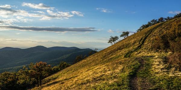 A Sós-hegy meredek, gyepes oldala