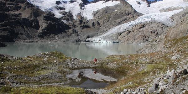 Gletschervorfeld am Gauligletscher.
