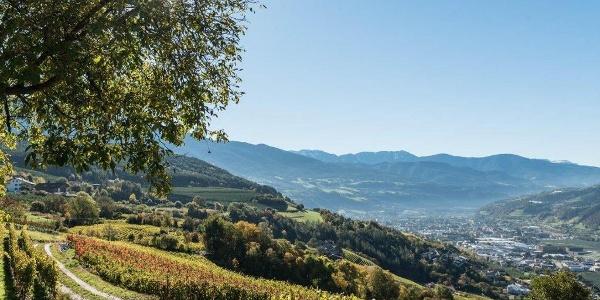 Blick von Raas auf Brixen