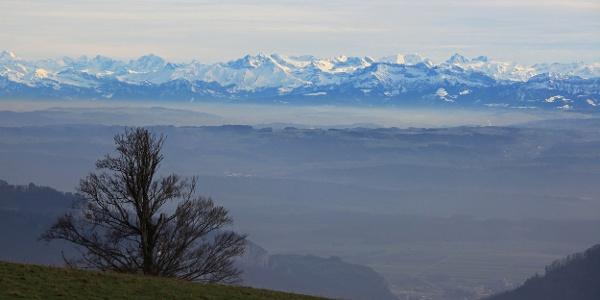Alpensicht bei der «Bettlerchuchi».