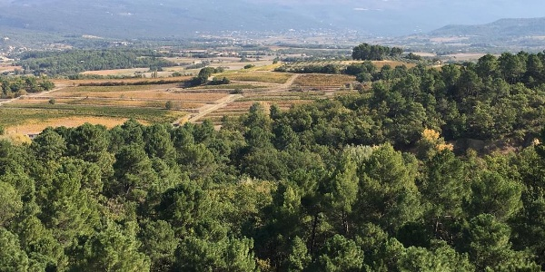 The valley beyond Russillon, looking towards Mt Ventoux