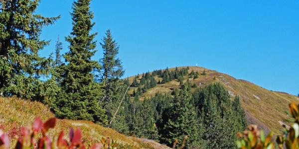 Blick über den Südkamm zum Gipfel des Vöttlecks