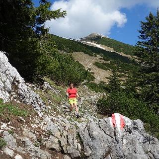 Über Stock und Stein zum Gipfel
