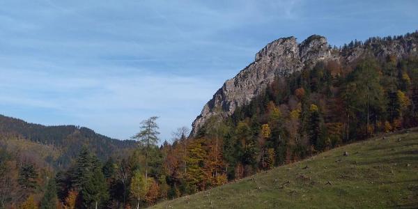 Oberhalb der Eschelmoosalm beginnt der Aufstieg in den Weißgraben.