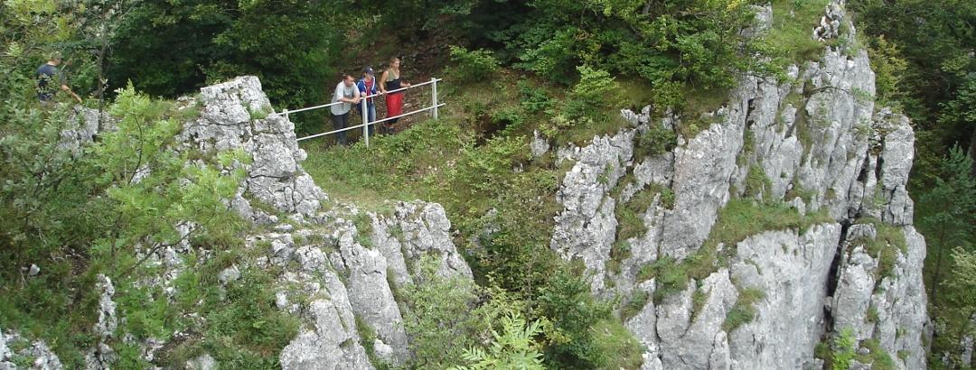 Tiefblicke vom Schaufelsen in das Donautal
