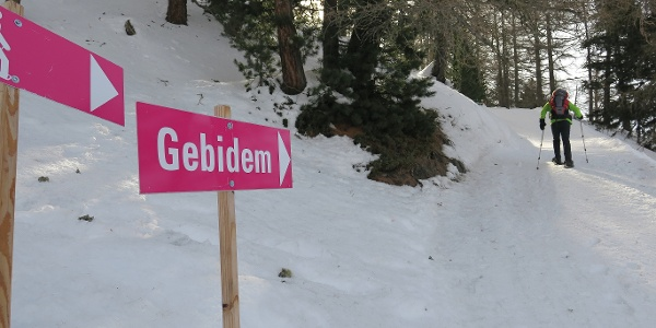 Pink markiert zum Gibidumpass.