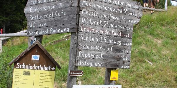 Viele Wandermöglichkeiten am Schauinsland.