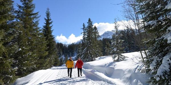 Winterwanderweg im Gebiet Rossweid