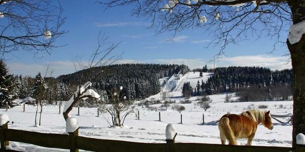 Blick auf den Skihang Ginsberger Heide