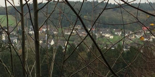 Blick vom Kammweg (3) Rtg. Stübbeken