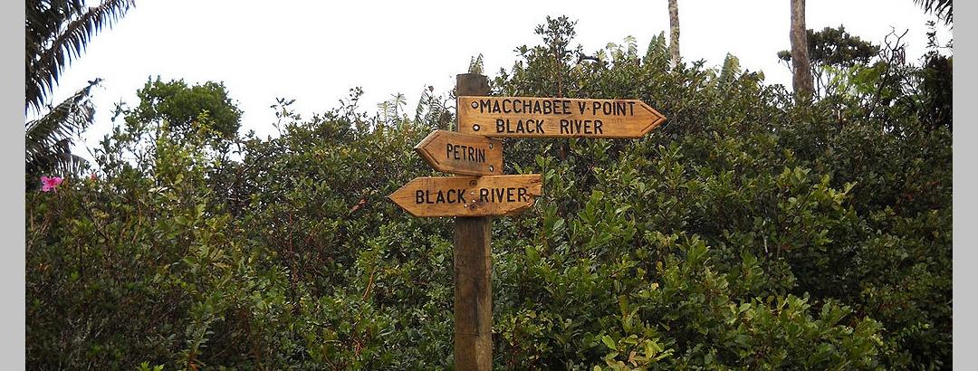 Macchabée & Black River Crossroad