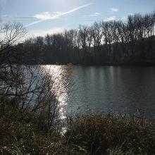 Donauwanderweg
