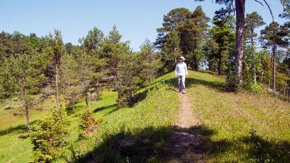 Naturschutzgebiet Chilpen.