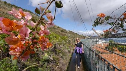 Wanderung durch Funchal